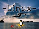 linux97 Linux Tape Backup Software
